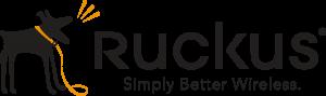 dcs-ruckus